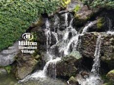 hilton Hawaiian village waterfall