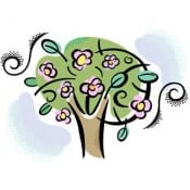 Resale Timeshare Seasons